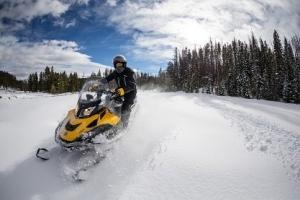 Тип «Снегоходы»